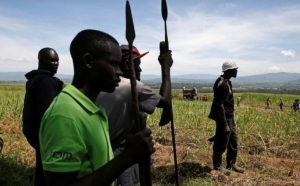 Members of the Luo ethnic group hold spears near the town of Muhoroni in Kisumu
